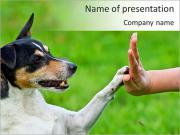 Dog Friend PowerPoint presentationsmallar