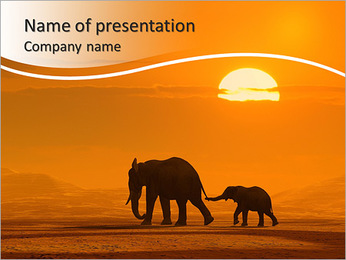 Elephants In Wild Nature PowerPoint Template