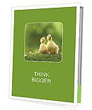 Yellow Duckling Presentation Folder