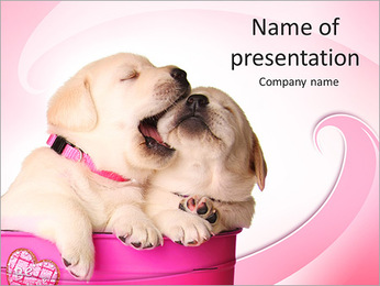 Labrador Puppy PowerPoint Template