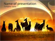 Wild Animals at Sunset PowerPoint Templates