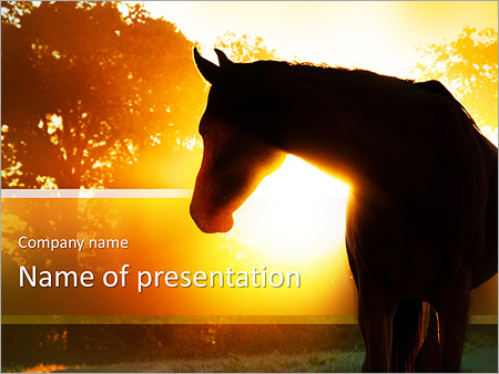 Horse Powerpoint Template Smiletemplates