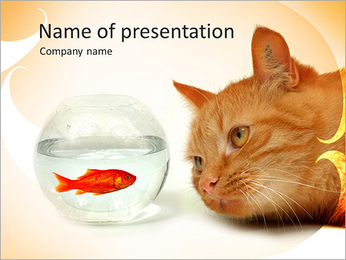 Cat And Fish PowerPoint Template