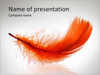 Red Feather PowerPoint Template