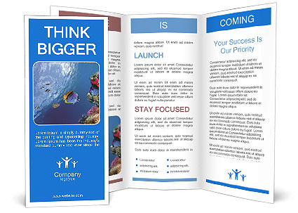 Threadfin butterflyfish chaetodon auriga red sea egypt for Egypt brochure templates