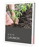 Planting a tomatoes seedling Presentation Folder