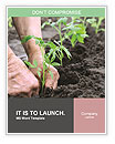 Planting a tomatoes seedling Word Templates