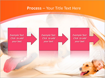 Girl Hugs Labrador PowerPoint Template - Slide 68