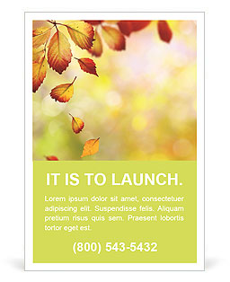 Autumn Beauty Ad Templates