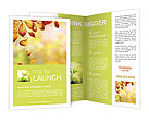 Autumn Beauty Brochure Template