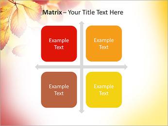 Autumn Beauty PowerPoint Template - Slide 17