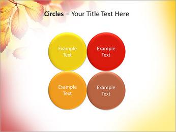 Autumn Beauty PowerPoint Template - Slide 18
