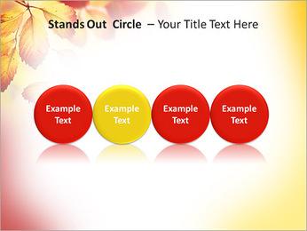 Autumn Beauty PowerPoint Template - Slide 56