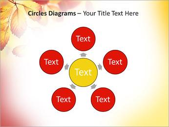 Autumn Beauty PowerPoint Template - Slide 58