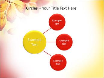 Autumn Beauty PowerPoint Template - Slide 59