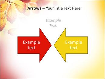 Autumn Beauty PowerPoint Template - Slide 70