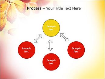 Autumn Beauty PowerPoint Template - Slide 71