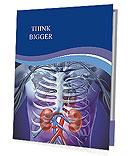 Kidney Function Presentation Folder
