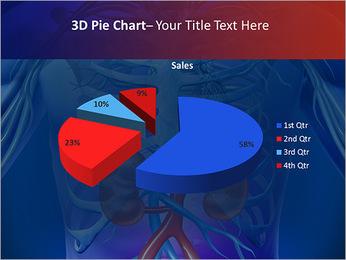 Kidney Function PowerPoint Template - Slide 15