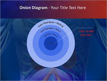 Kidney Function PowerPoint Template - Slide 41