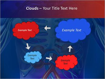 Kidney Function PowerPoint Template - Slide 52