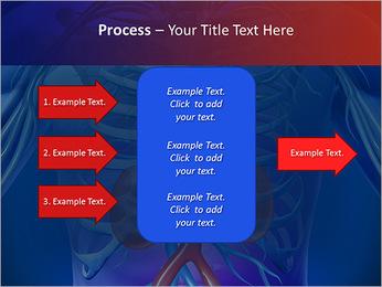 Kidney Function PowerPoint Template - Slide 65