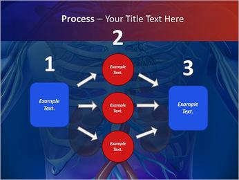 Kidney Function PowerPoint Template - Slide 72