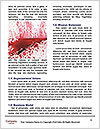 Murder Victim Word Template - Page 4