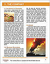 Pollution Issue Word Template - Page 3