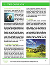 Lie On Grass Word Template - Page 3