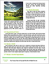 Lie On Grass Word Templates - Page 4