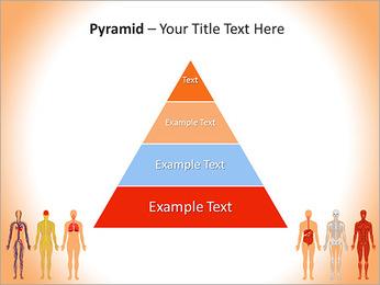 Learn Human Anatomy PowerPoint Template - Slide 10