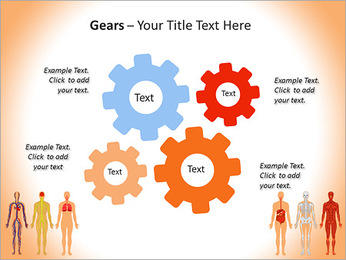 Learn Human Anatomy PowerPoint Template - Slide 27