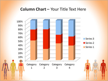 Learn Human Anatomy PowerPoint Template - Slide 30