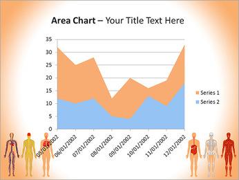 Learn Human Anatomy PowerPoint Template - Slide 33