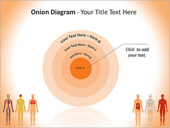 Learn Human Anatomy PowerPoint Template - Slide 41