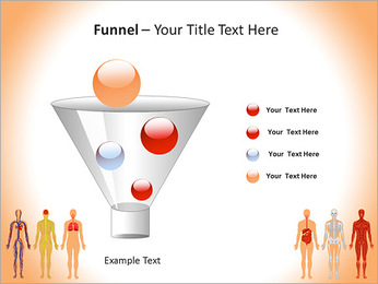 Learn Human Anatomy PowerPoint Template - Slide 43