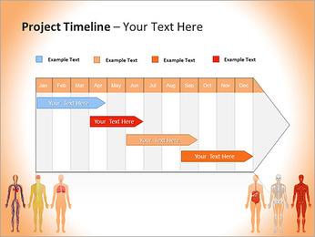 Learn Human Anatomy PowerPoint Template - Slide 5