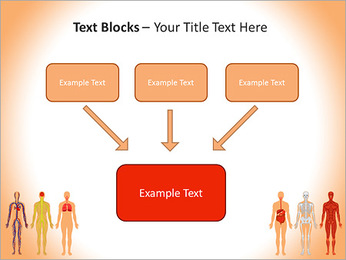 Learn Human Anatomy PowerPoint Template - Slide 50