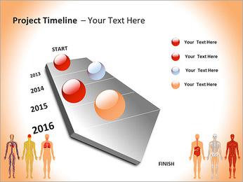 Learn Human Anatomy PowerPoint Template - Slide 6