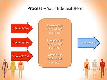 Learn Human Anatomy PowerPoint Template - Slide 65