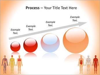 Learn Human Anatomy PowerPoint Template - Slide 67
