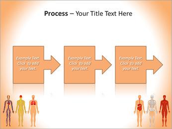 Learn Human Anatomy PowerPoint Template - Slide 68