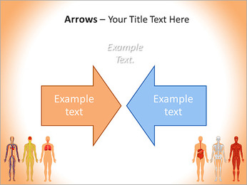 Learn Human Anatomy PowerPoint Template - Slide 70