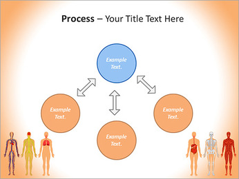 Learn Human Anatomy PowerPoint Template - Slide 71