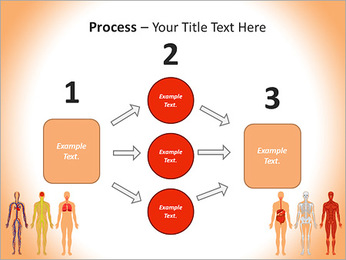 Learn Human Anatomy PowerPoint Template - Slide 72