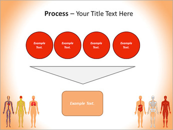 Learn Human Anatomy PowerPoint Template - Slide 73