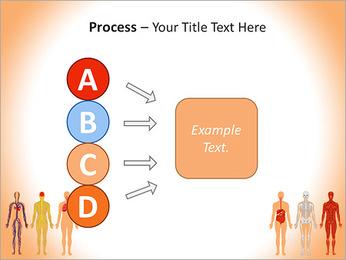 Learn Human Anatomy PowerPoint Template - Slide 74