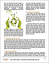 Ecology For Children Word Templates - Page 4