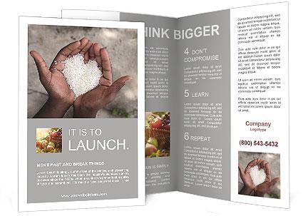 Rice Brochure Templates